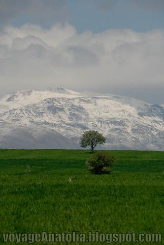 Karakush Mountains