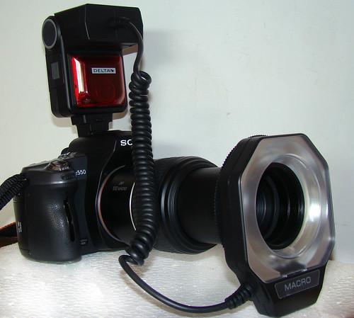 DSC00921-2