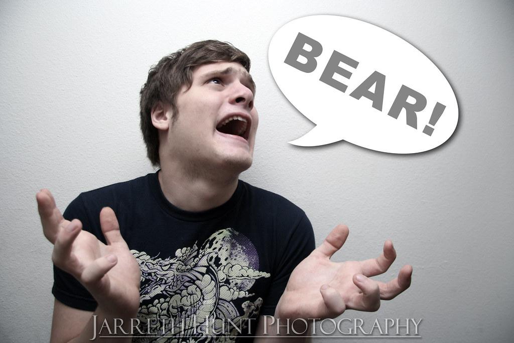 141/365 BEAR!