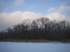 IMG_6464 (alberto238) Tags: winter lakeside snowtrails