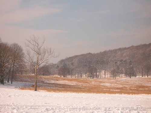 Valley Forge in the snow