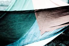 Palestinian flag - already forgotten (LeeVice) Tags: delete5 delete2 delete6 delete7 save3 delete3 save7 save8 delete delete4 save save2 save9 save4 save10 save6 savedbythedeltemeuncensoredgroup adamdidnttag