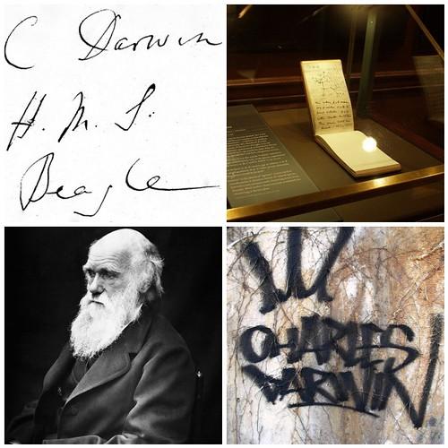 Charles Darwin Mosaic