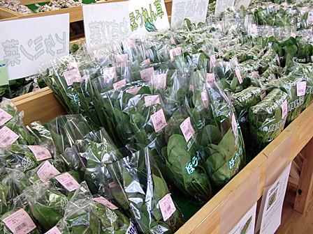 新鮮野菜~山形「こまぎ」