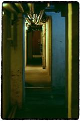 mOre dOwn under (h-j.nu) Tags: light home pentax  tubes sigma frederiksberg downunder 70200mm frb allrightsreserved sigmalenses langelandsvej k20d pentaxk20d henrikfrb k20dsnaps henrikbstudio