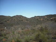 DSCF0002_compressed (North Ranch, California, United States) Photo