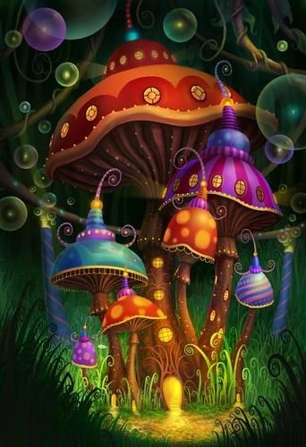 mushrooms fun draw