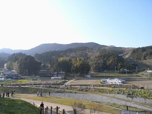 09-04-10【桜】@又兵衛桜-09