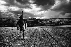 Rain on the scarecrow (Effe.Effe) Tags: blackandwhite bw monochrome field rain clouds countryside nuvole scarecrow tracks pluie bn hills campagna terra nuages campagne espantapjaros pioggia senigallia biancoenero colline semina spaventapasseri tracce pouvantail linee blancetnoir seeding bwdreams montedoro ensemencement campoarato