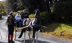 ONE LIKE THIS USED TO TAKE ME TO SCHOOL YOU KNOW ! (Navan Trekkers Photos) Tags: pictures ireland irish inspiration mountains nature bluebells outdoors landscapes scenery natural mountaineering recreation cavan ideas llamas inspiring hillwalking tranquillity freelancephotographer hillwalkers inthewood scenery irishlandscapes irish landscapephotographs irishphotographers paulegan irishmountains paddyreilly navantrekkers killinkere westknockbride hillwalkingclubs northleitrimglenswalkingfestival hillwalking hillwalkers hillwalkingclubs irishlandscapes irishmountains dartrymountains yeatscountry ulsterholeysoleswalkingfestival irishphotographers paulegan landscapephotographs freelancephotographer paulegantrimgmailcom