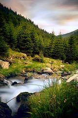 Mountain Sunset (Maddy C.) Tags: longexposure sunset mountain green water stream altitude romania sigma1020mm ndfilter fagarasmountains muntiifagaras argescounty judetularges 95sec