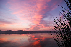 Sonrisa (Rudy Malmquist) Tags: morning blue red sky lake grass clouds sunrise reeds early michigan grand rapids east egr
