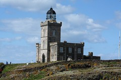Isle Of May Upper Lighthouse (AMKs_Photos) Tags: sea lighthouse bird nature birds animal canon photography eos scotland may reserve forth isle anstruther seabird firth isleofmay amk rspb 450d amksphotos