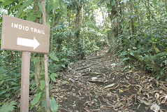 Arenal Vista Lodge. Trail