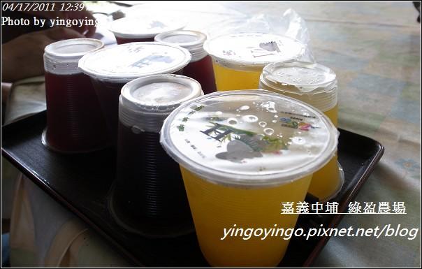 嘉義中埔_綠盈農場20110417_R0019038