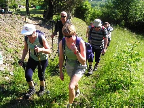 Chemin dans les prés d'Outrechaise - F. du bois 014.jpg