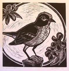 'midnight mockingbird' - craftyhag on Flickr