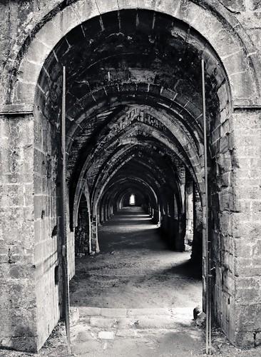 North Yorkshire -IMG_0166