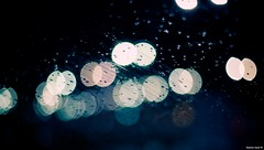 Shooting in the Rain | Outtakes.365 (Stephan Geyer) Tags: rain night canon 50mm dubai dof bokeh outtakes explore raindrops 5d canon5d 5014 ef50mmf14usm canoneos5d project365 explored canon5dclassic