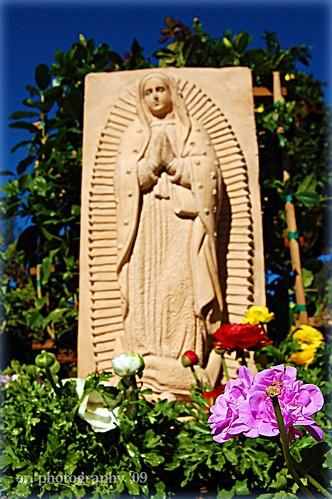 La Virgen in SB