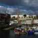Un matin au port (3)