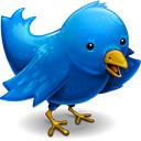 twitter pájaro