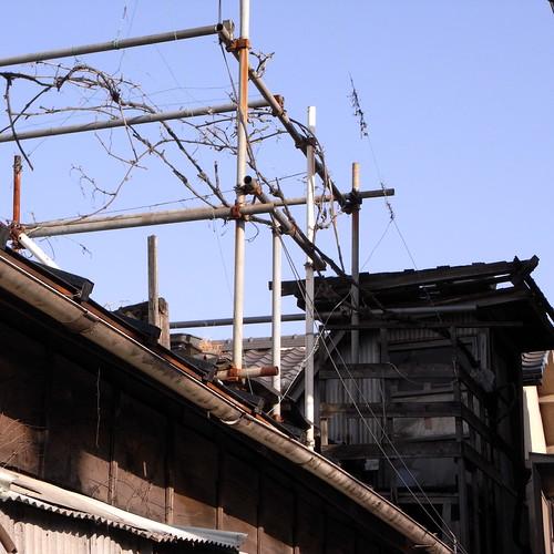 三ノ輪橋電停近くにて2。