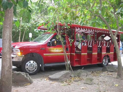 Our Safari Taxi Bus