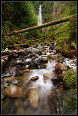 Explorer Falls (Mike Hornblade) Tags: tree water landscape waterfall washington moss northcascades lakeroesiger