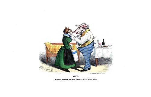011-Les métamorphoses du jour (1869)-J.J Grandville