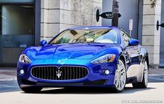 Maserati GranTurismo (AutoMotionPhoto.com) Tags: coral mercedes benz nikon miami wheels ferrari collection gables corvette maserati z06 d300 automotionphoto