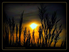 Falling Sun (mountainbeliever) Tags: sunset sun sunlight southwest nature clouds golden evening colorado colorful skies shadows grasses mothernature picnik fourcorners springtime colorfulcolorado skytheme goldensunsets perfectsunsetssunrisesandskys coloradoskies coloradosunsets