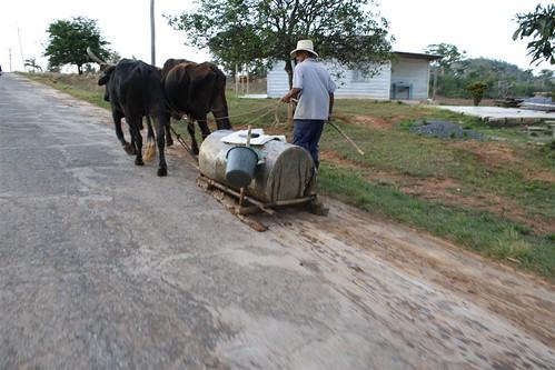viñales, trasporto acqua by clapat.