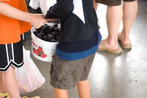 blackberry hefting