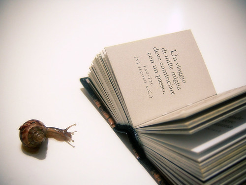 Snail's wisdom