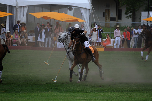 Polo Classic New York