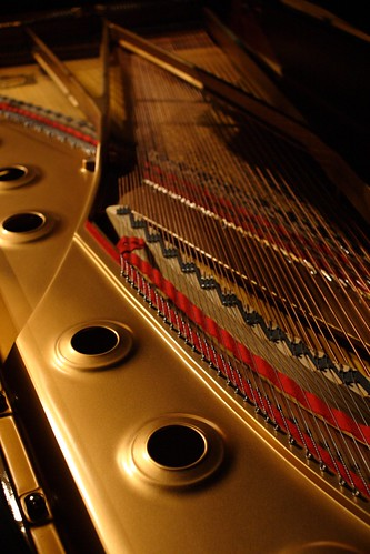 photograph piano strings