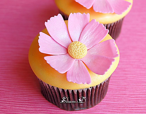 Cosmos Flower Cupcakes