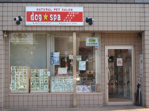 Spa de perros
