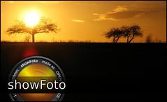 showfoto-sunrize