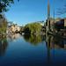 Regent Canal: April 27