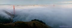 Fog Laced Golden Gate - (Large Panorama) (Darvin Atkeson) Tags: california bridge panorama usa fog america golden us nikon gate san francisco d300 darvin atkeson  darv   liquidmoonlightcom liquidmoonlight