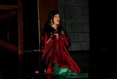 El jorobado de Notre Dame - El musical (16)
