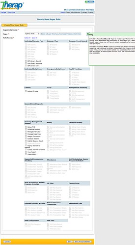 Screenshot of Create New Super Role page for agency wide type