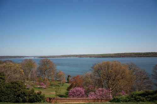 View from the back of Mt Vernon