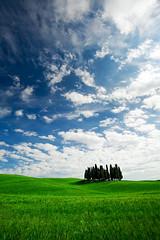 The Gathering (Filippo Brandini) Tags: blue sky green grass clouds florence val tuscany chianti pienza montepulciano cypresses filippo dorcia brandini