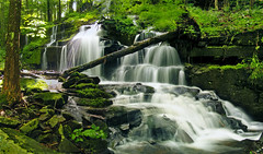 Down 'n' Out (Nicholas_T) Tags: summer forest waterfall hiking pennsylvania falls creativecommons poconos pikecounty delawarestateforest stairwaywildarea stairwayfalls