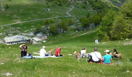 Monte Baldo Gruppe P1010220
