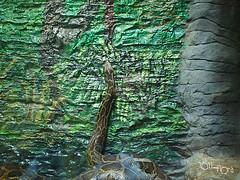 20110602酷節能體驗營 (57) (fifi_chiang) Tags: zoo taiwan olympus taipei ep1 木柵動物園 17mm 環保局 酷節能體驗營