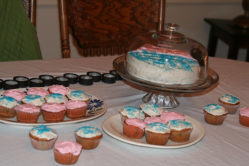 Cupcakes for the Pink or Blue Party